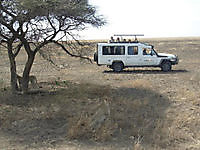 Ecotourism Africa travel Safaris Arusha