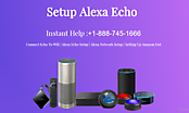 Setup Echo Plus Everett