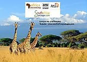 South Africa Tour Package JOHANNESBURG